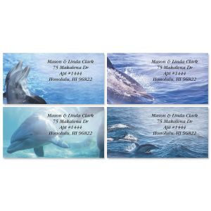 Dolphins at Play Border Address Labels  (4 Designs)