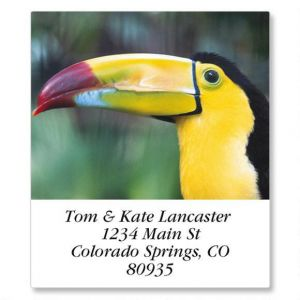 Animal Lives Select Address Labels  (24 Designs)