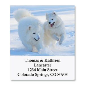 dogs address labels colorful images