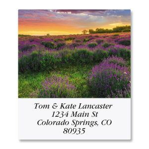 Sunsets Select Address Labels  (12 Designs)