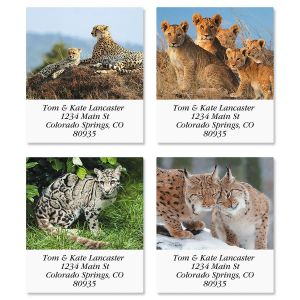 Wild Cats Select Address Labels  (4 Designs)