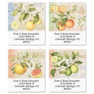 Citrus Select Address Labels  (4 Designs)