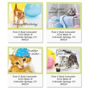 Birthday Cats Select Address Labels  (4 Designs)