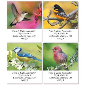 Birds of America Select Return Address Labels (4 Designs)