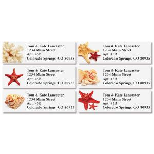 Sea Stars & Shells Classic Return Address Labels (6 Designs)