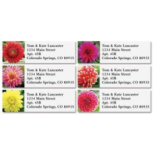 Dahlias Classic Return Address Labels (6 Designs)