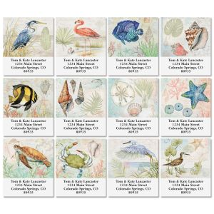 Shoreline Select Return Address Labels (12 Designs)