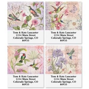 Hummingbirds Select Return Address Labels (4 Designs)