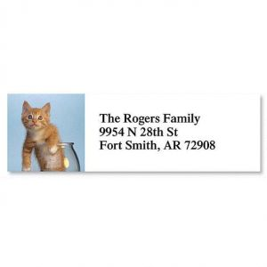 Kitty Kapers Classic Address Labels  (6 Designs)