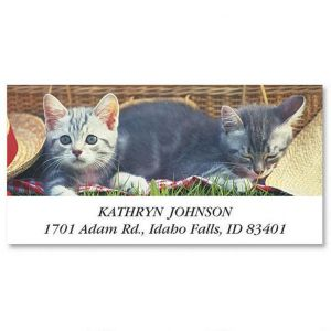 Kitty Kapers Deluxe Address Labels  (6 Designs)