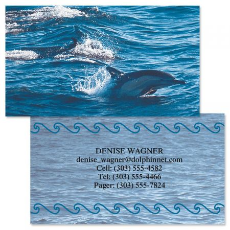 Dolphins at Play Double-Sided  Business Cards  (4 Designs)