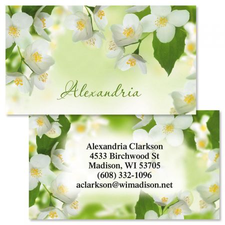 Jasmine Double-Sided  Business Cards