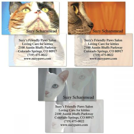 Cat Faces Double-Sided  Business Cards  (3 Designs)