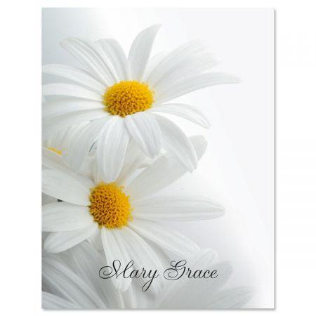 White Marguerite Custom Note Cards