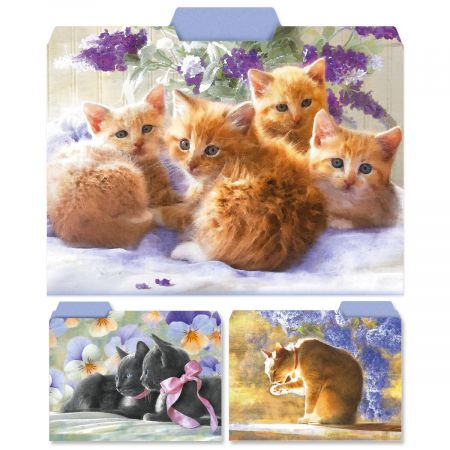 Purrfectly Feline File Folders  (3 Designs)