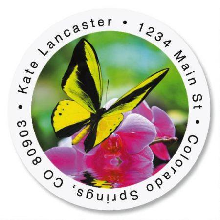 Milkweed Butterfly Round Return Address Labels