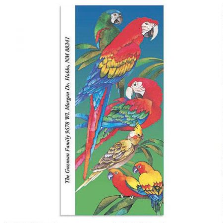 Parrots Oversized Return Address Labels