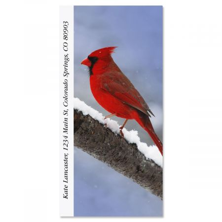 Cardinal  Oversized Address Labels