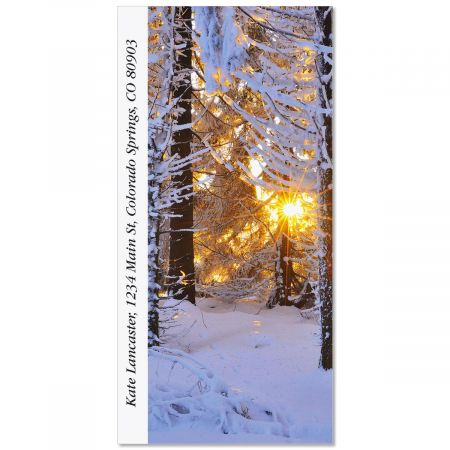 Snow Covered Conifer Oversized Return Address Labels