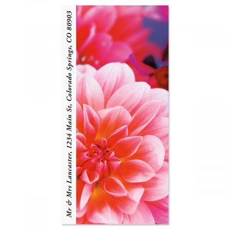 Dahlia Bloom Oversized Return Address Labels