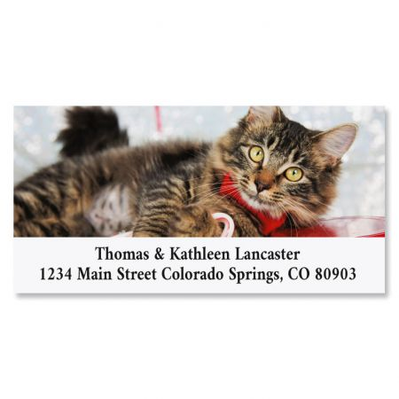 Happy Pawlidays Deluxe Christmas Address Labels