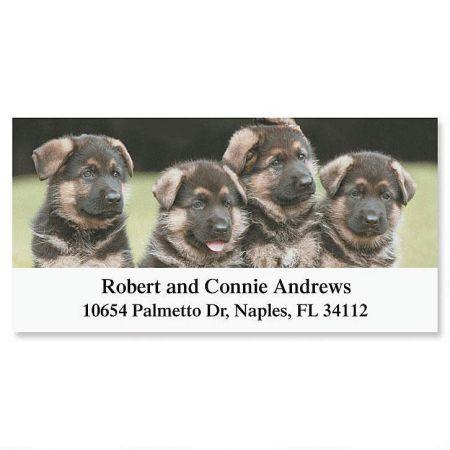 German Shepherd Pups Deluxe Return Address Labels