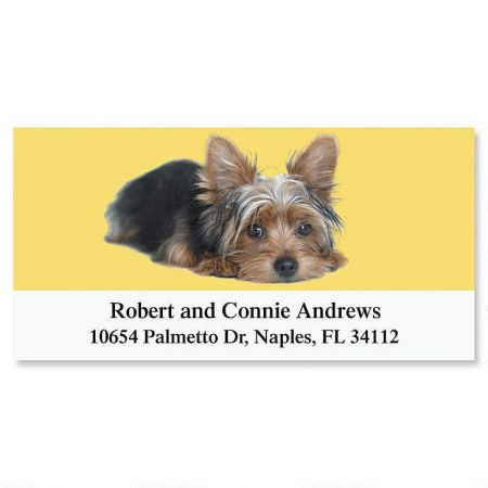 Yorkie Deluxe Return Address Labels