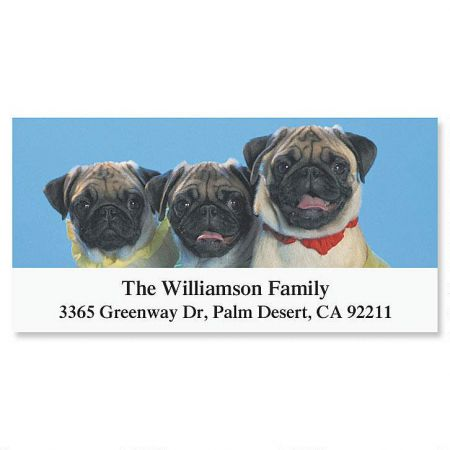 Pug Deluxe Return Address Labels