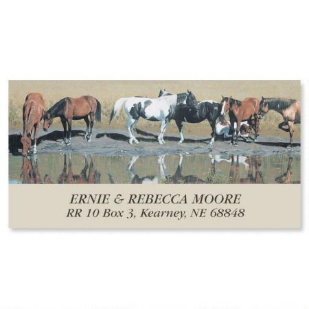 Sunday Afternoon Deluxe Return Address Labels