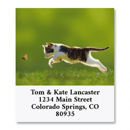 Butterfly Chaser Select Return Address Labels