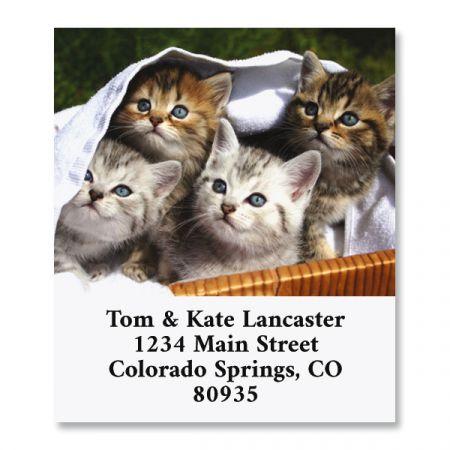 Kitten Basket Select Return Address Labels