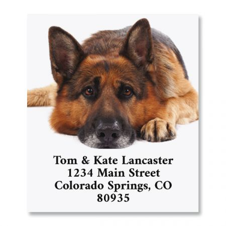 Dog Daze Select Return Address Labels