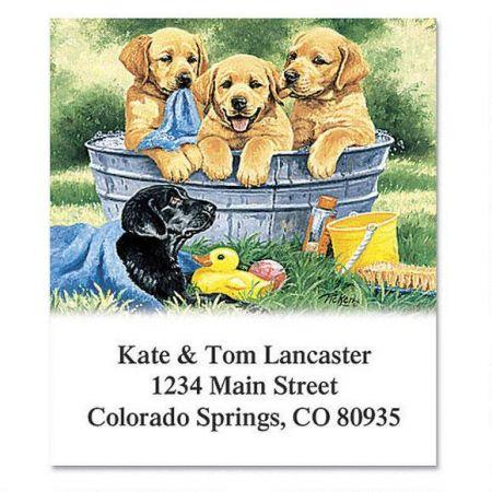 Rub-a-Dub Pups Select Return Address Labels