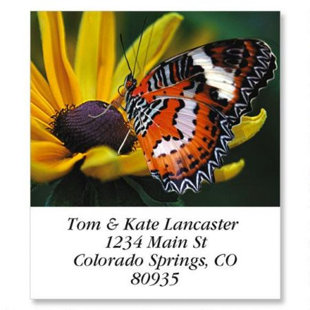 Malay Lacewing Select Return Address Labels