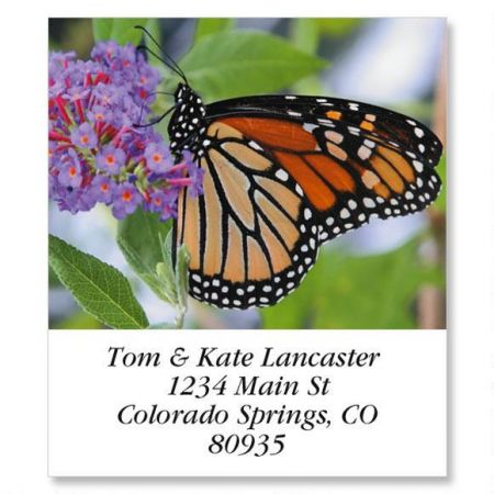 Monarch Butterfly Select Return Address Labels
