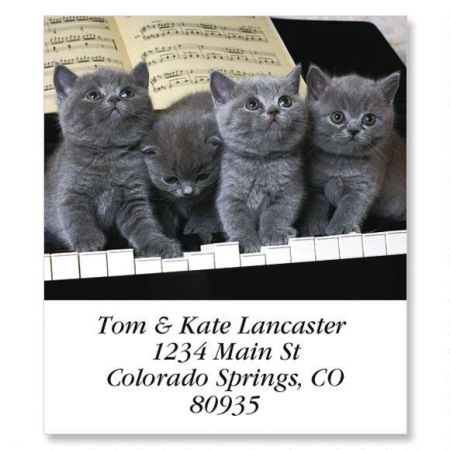 Grey Tunes Select Address Labels
