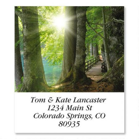 Sun Through Trees  Select Return Address Labels