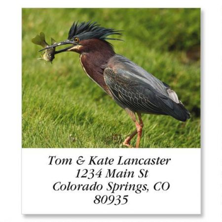 Green Heron Select Return Address Labels