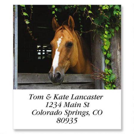 Horse In Barn Select Return Address Labels