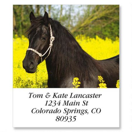 Black Horse In Yellow Select Return Address Labels