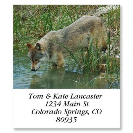 Wolf Reflections Select Return Address Labels