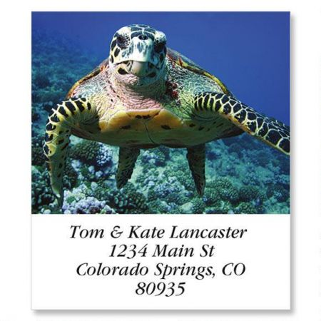 Sea Turtle Select Return Address Labels