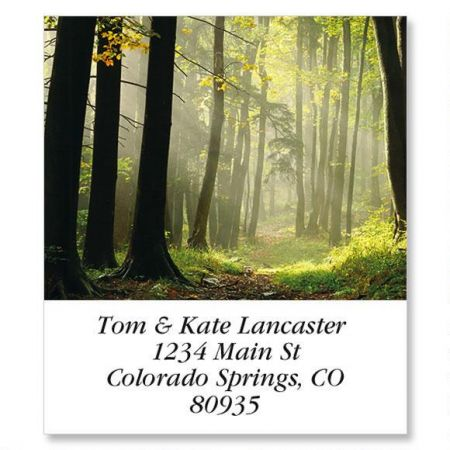 Autumn Forest Path Select Return Address Labels