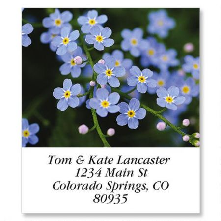 Meadow Blue Select Return Address Labels