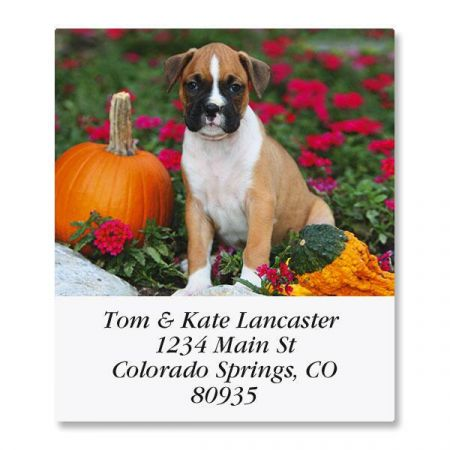 Boxer Pup Select Return Address Labels