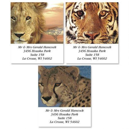 Big Cats   Select Address Labels   (3 Design)