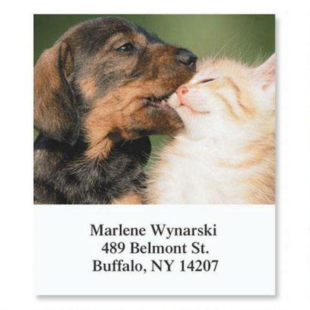 Animal Buddies Select Address Labels  (6 Designs)