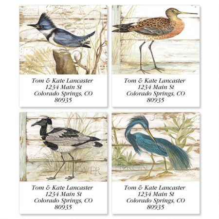 Seabirds Select Address Labels  (4 Designs)