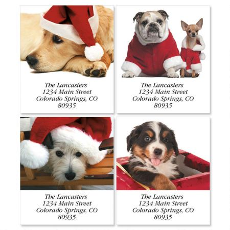 Christmas Dogs Select Return Address Labels  (4 Designs)