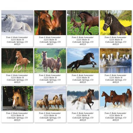 For Horse Lovers Select Address Labels  (12 Designs)